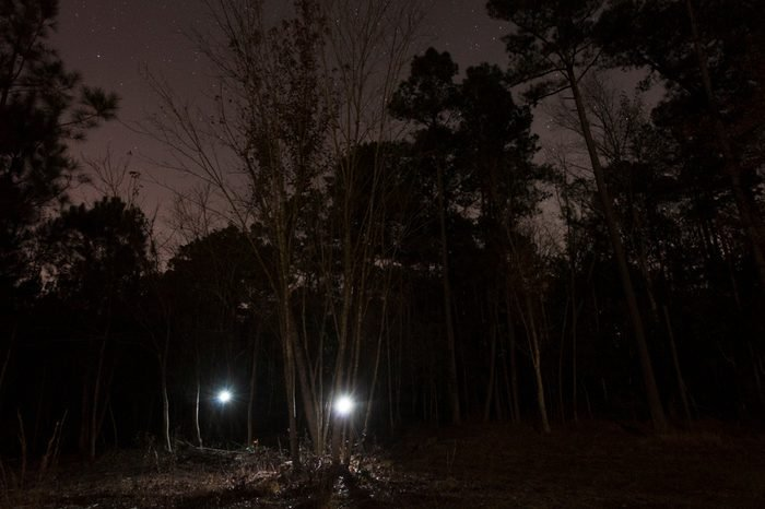 Two lights in a dark North Carolina forest with stars above