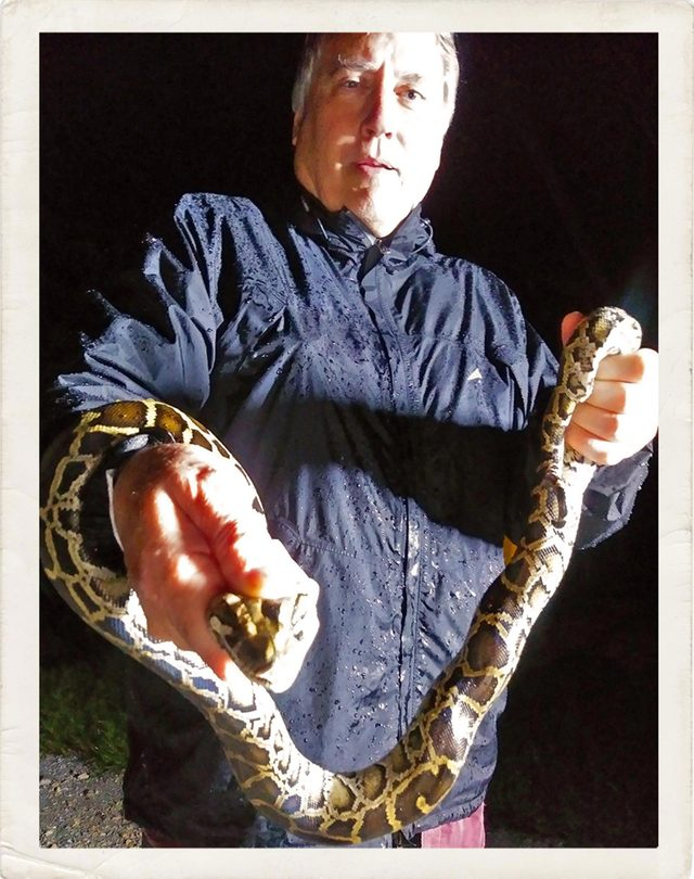 These Killer Snakes Are Terrorizing Southern Florida—and I Caught One of Them
