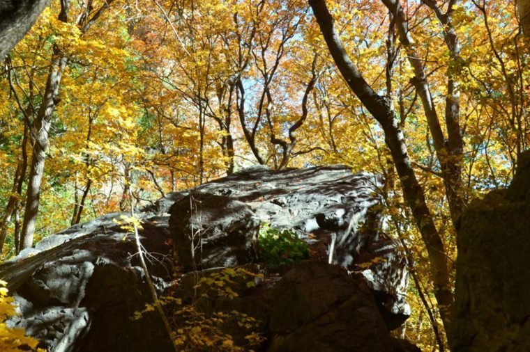 15 National Parks That Look Even More Beautiful in Fall