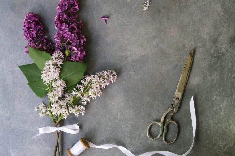 Bouquet of purple lilacs flowers on a gray background. Vintage floral background with spring flowers. Copy space