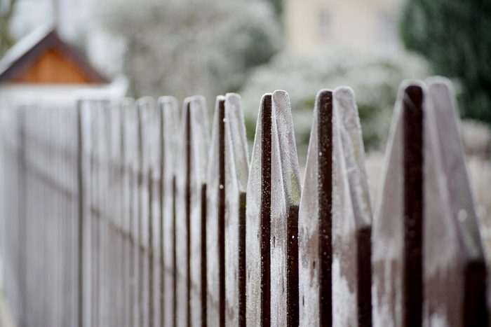 winter fence, white fence, cold, snow, frozen