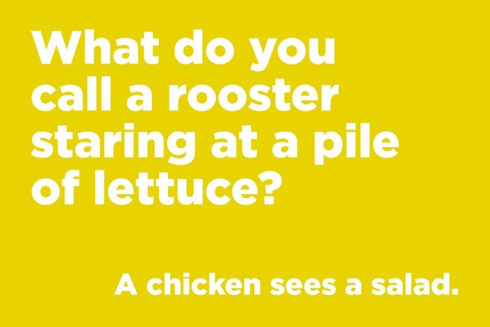 What do you call a rooster staring at a pile of lettuce?