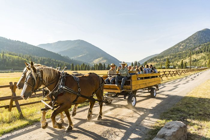 AbD Montana and Yellowstone