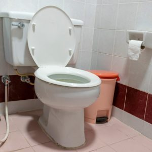 Here's Why You Should Always Close the Toilet Lid When You Flush