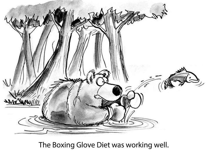 bear fish boxing glove diet