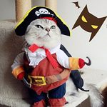 The 20 Best Cat Costumes for Halloween