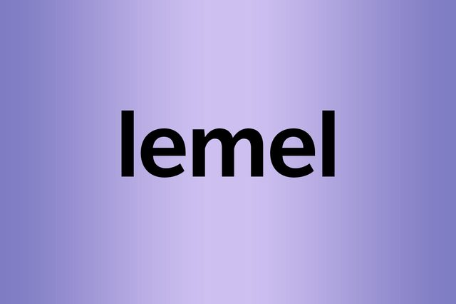 lemel palindrome words