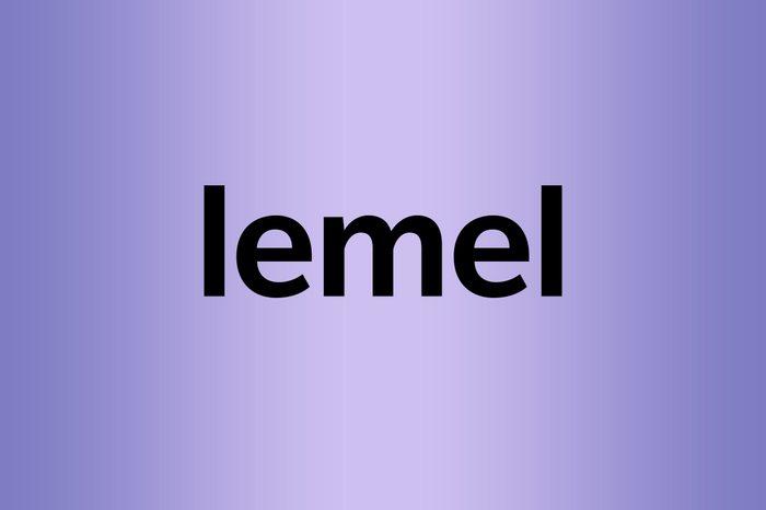 lemel palindrome words