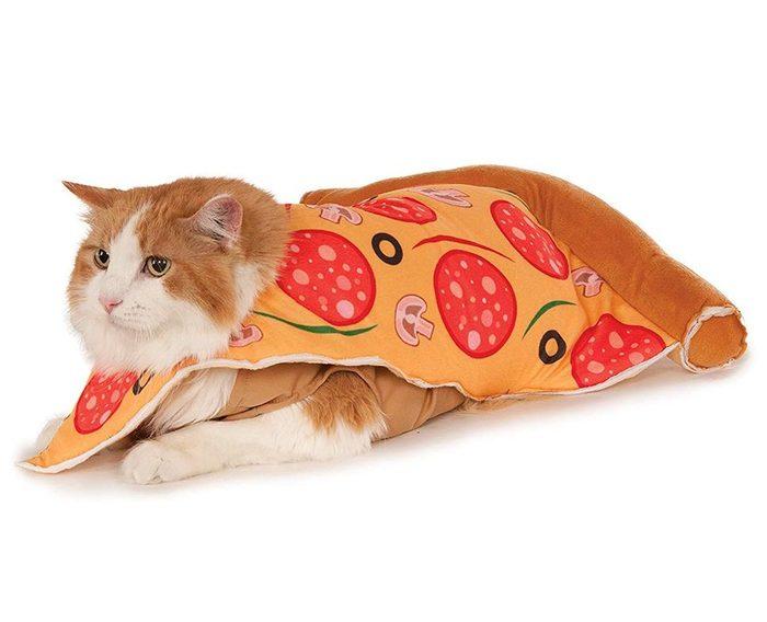 Pizza Slice Pet Suit, Small