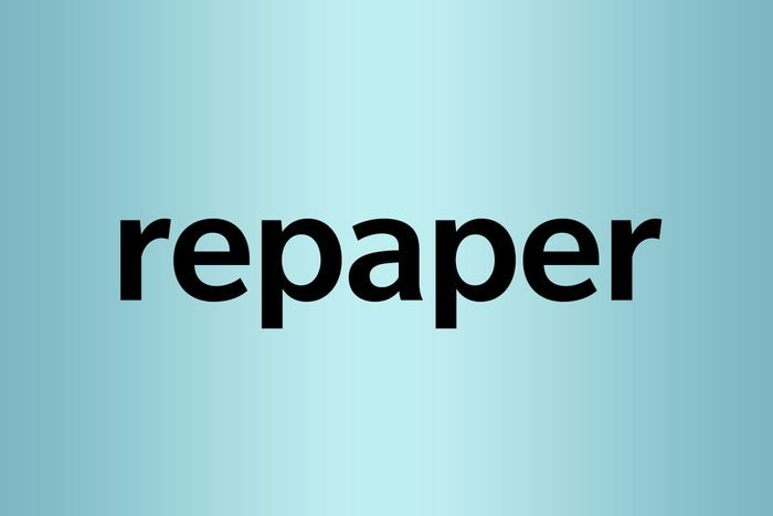 repaper What is a palindrome