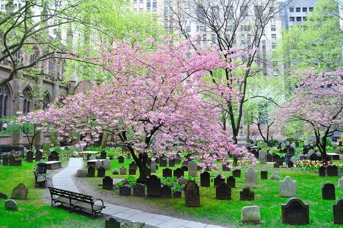 The Historic Trinity Church cemetery in New York, New York.