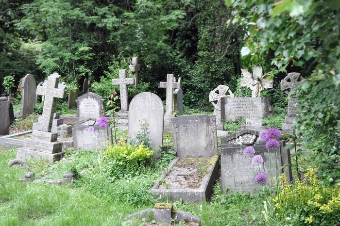 Old cemetary England. In Highgate, London you will find this fairy tale memorial with its overgrown tombstones.