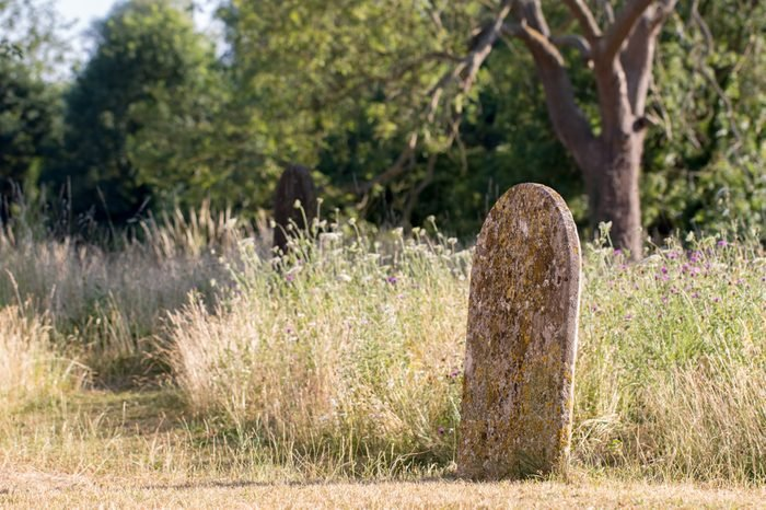 Picturesque English countryside graveyard. Ancient rural churchyard cemetary burial site in Summer with trees and wild flowers.