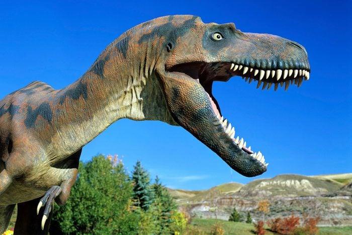 Terrell Museum of Paleontology