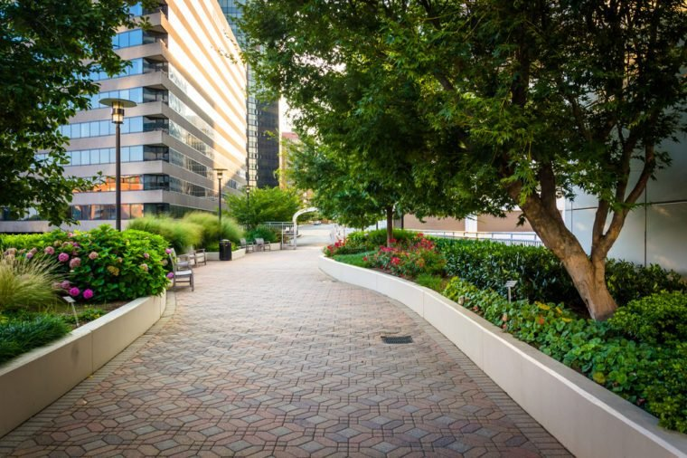 Gardens and modern buildings along a path at Freedom Park, in Rosslyn, Virginia.