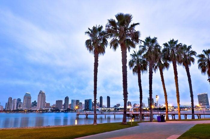 California Palm Trees and City of San Diego, California USA