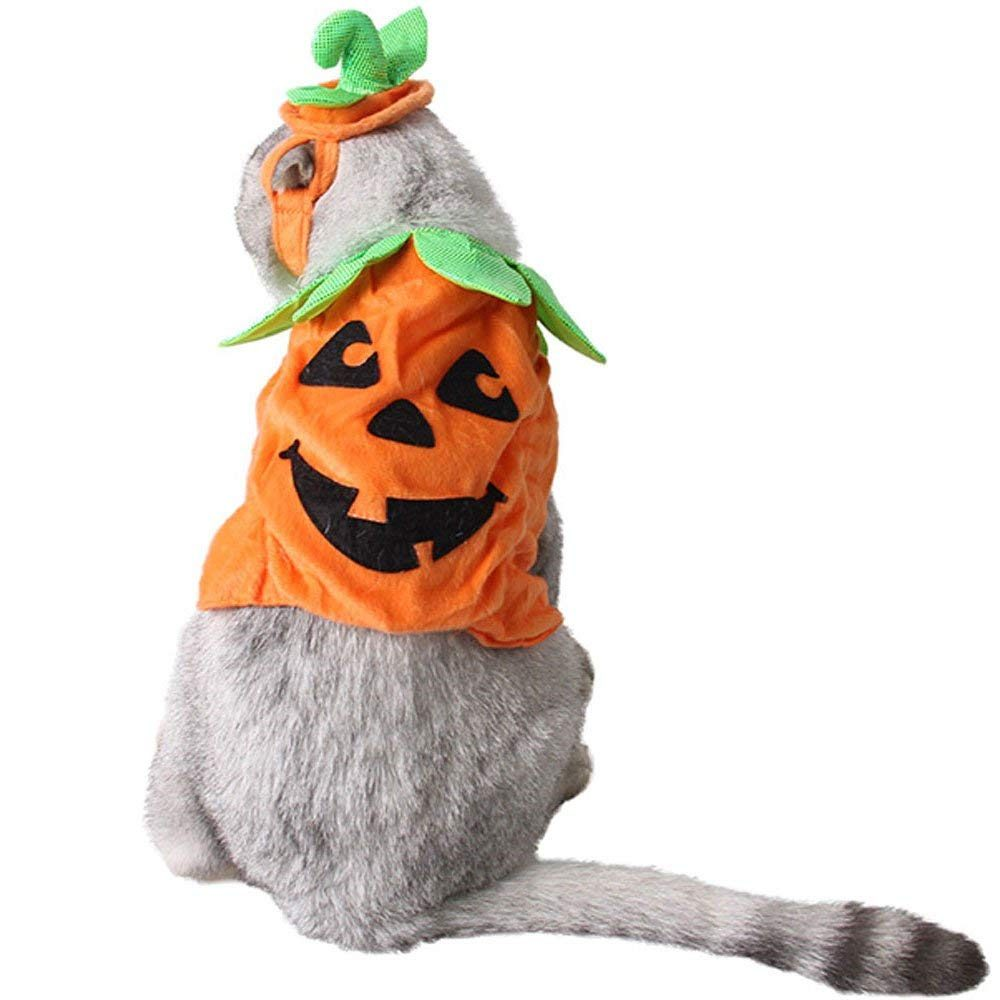 Bolbove Pet Pumpkin Costume for Cats & Small Dogs Party Halloween Cosplay Free Size Orange (Hat+Clothes)