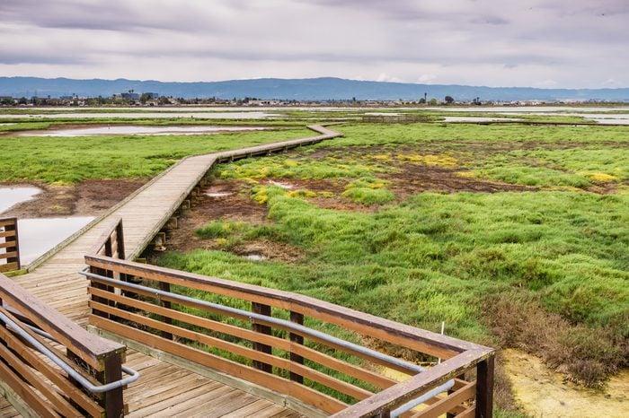 Boardwalk through Alviso Marsh on a cloudy day, San Jose, South San Francisco Bay, California