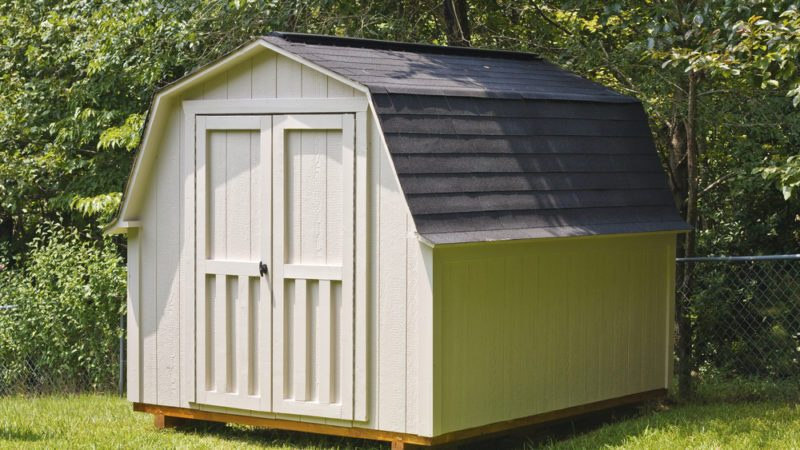 A wood utility shed in a back yard