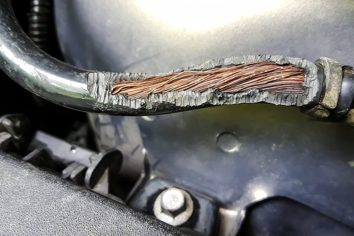 Damage on rubber of electricitywire in thecar from rat bite
