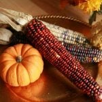 """11 Thanksgiving """"Facts"""" That Actually Aren't True"""