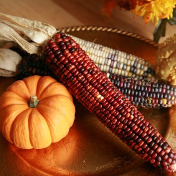 "11 Thanksgiving ""Facts"" That Actually Aren't True"