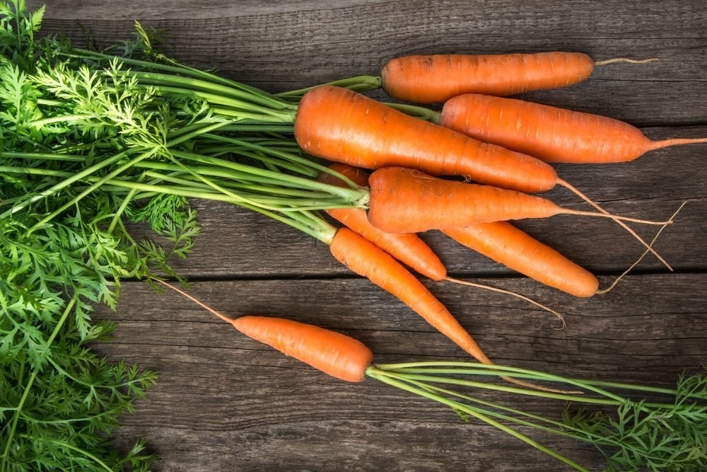Fresh organic carrots with green tops on wooden table. Copy space. Top view.