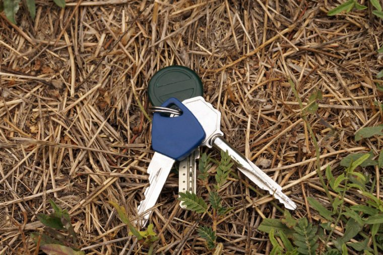 Lost the keys on the grass