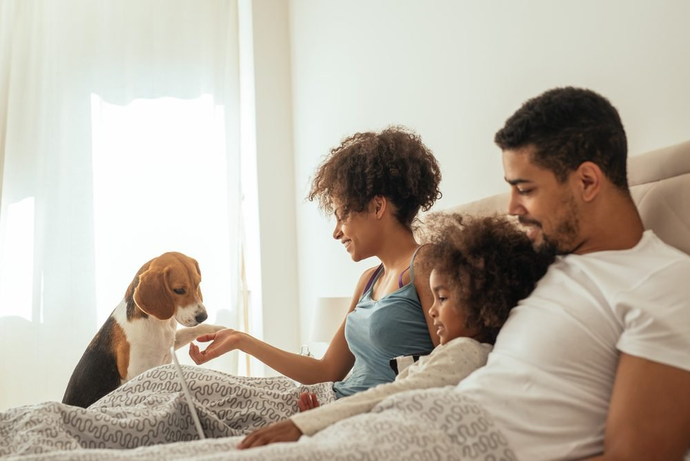 Happy family playing with their dog in bed.