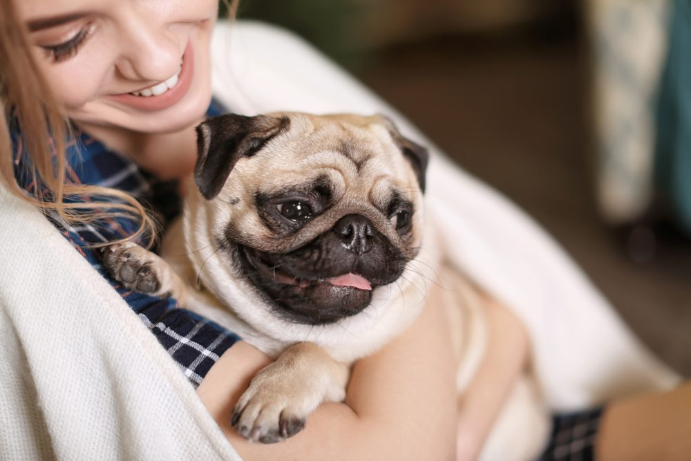 Young woman with cute pug dog at home. Pet adoption