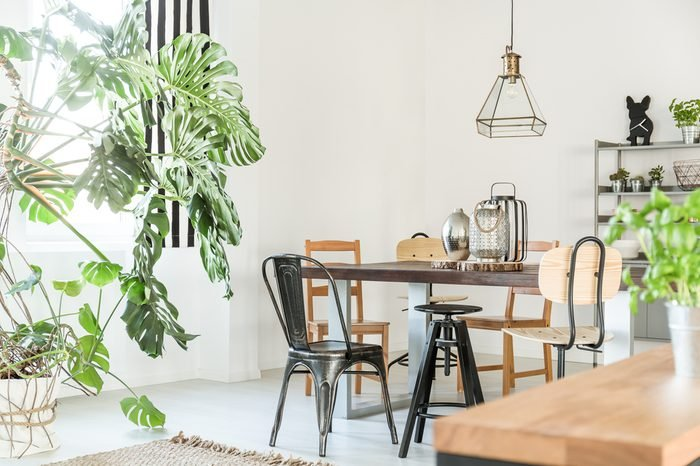 Bright dining room with table, chairs, bookshelf and green plant