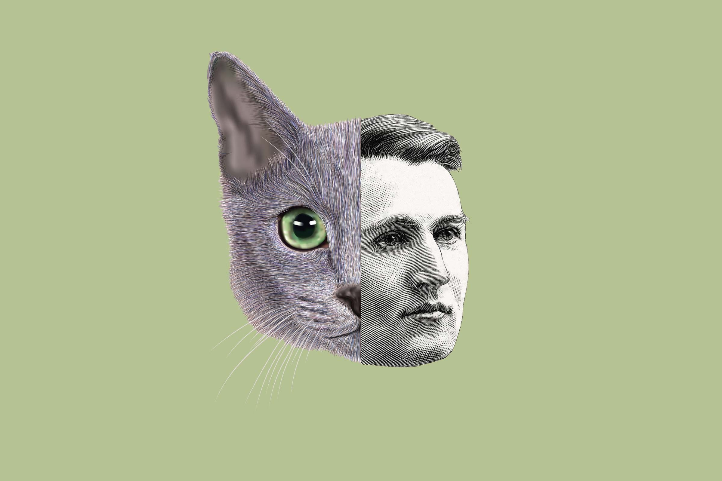 Thomas Edison is the reason you love cat videos