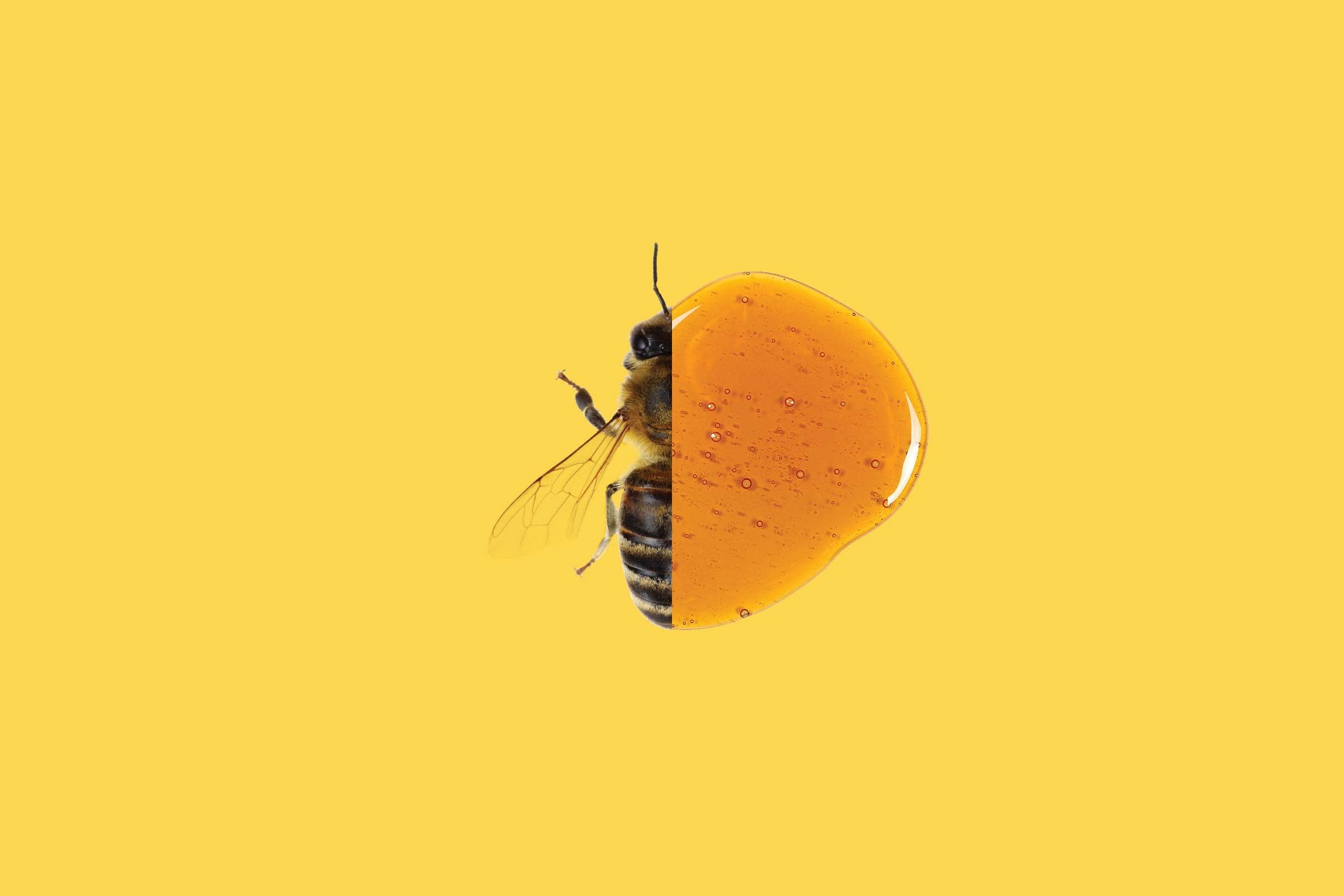 bees can make colored honey