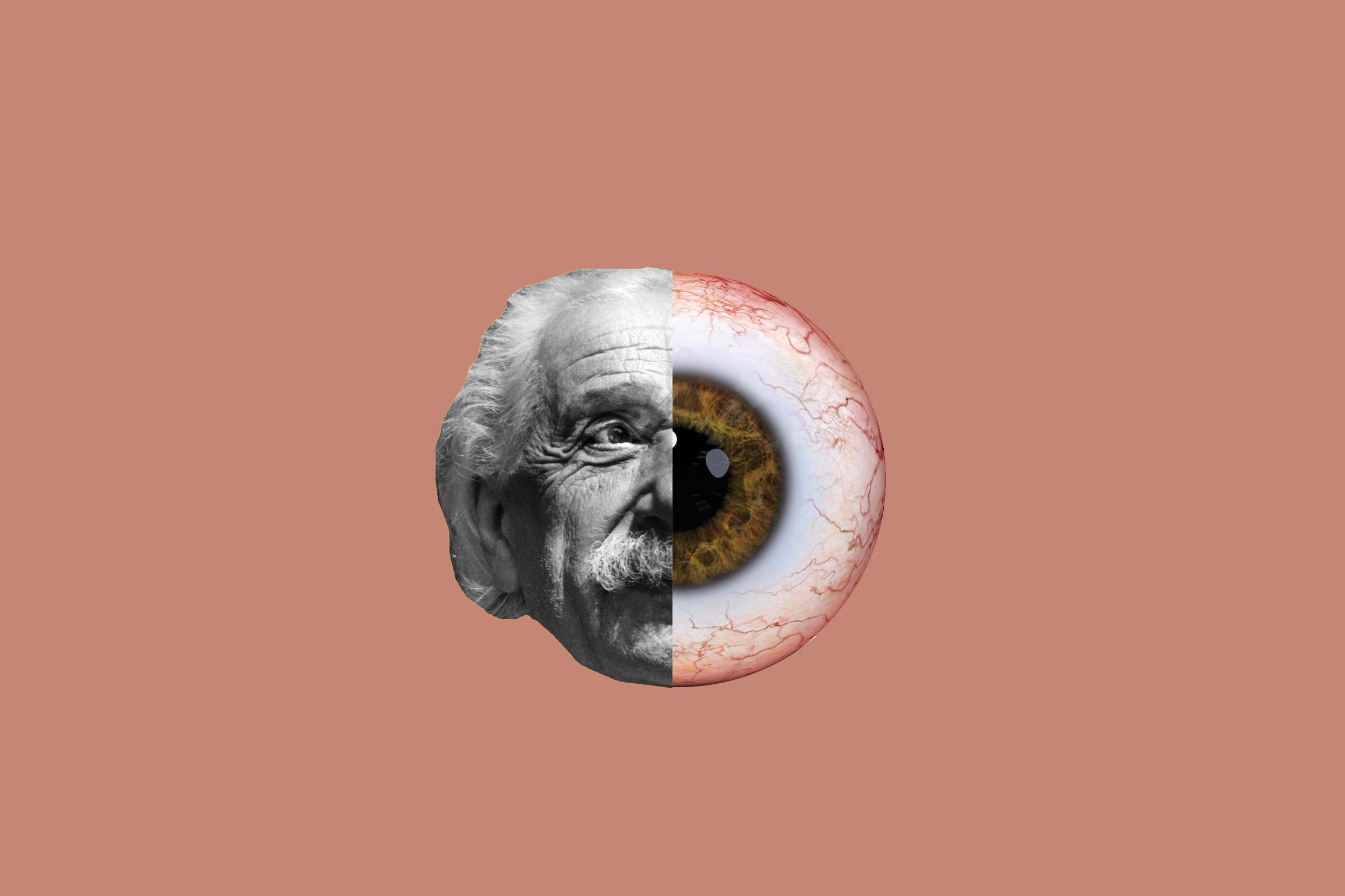 Einstein's eyeballs are in NYC
