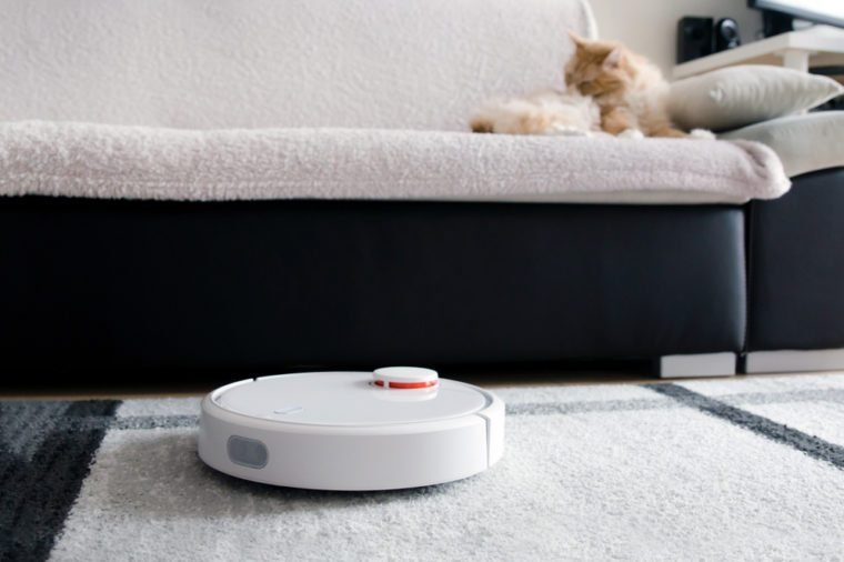 Robotic vacuum cleaner cleaning the room. Cat sitting on the sofa.