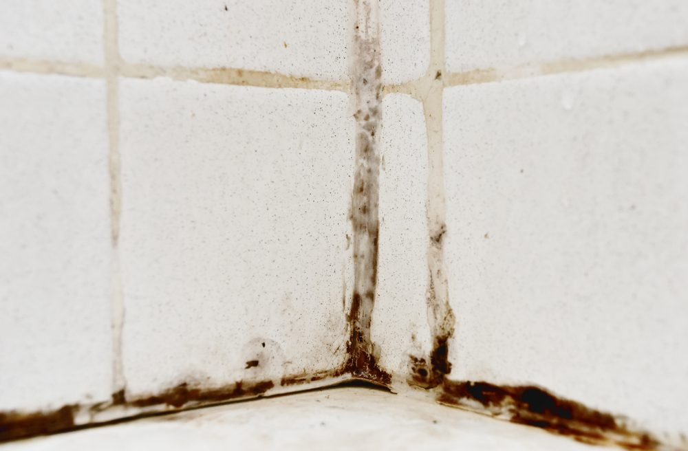 Using vinegar to clean mold and mildew