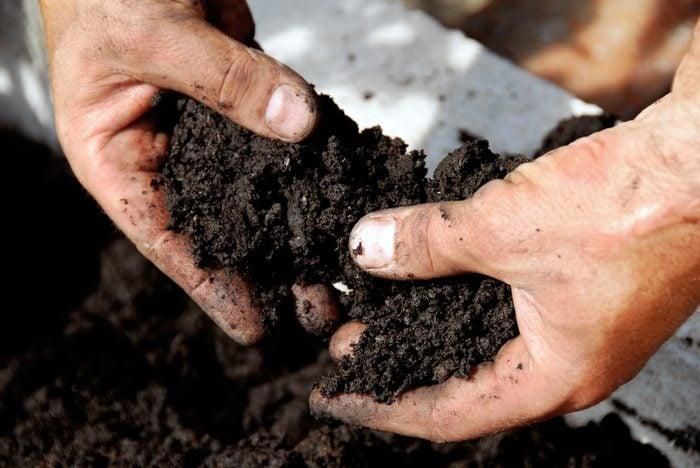 vinegar uses to test soil acidity or alkalinity