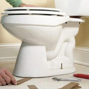 rocking toilet