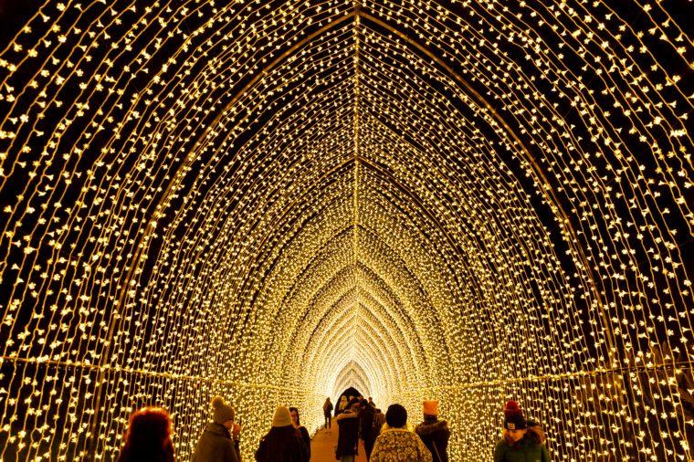 chicago botanic garden lightscape christmas lights