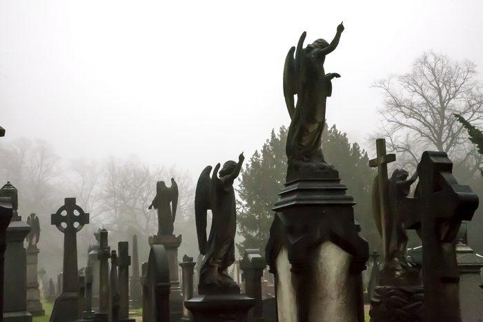 statues of angels in misty atmospheric graveyard