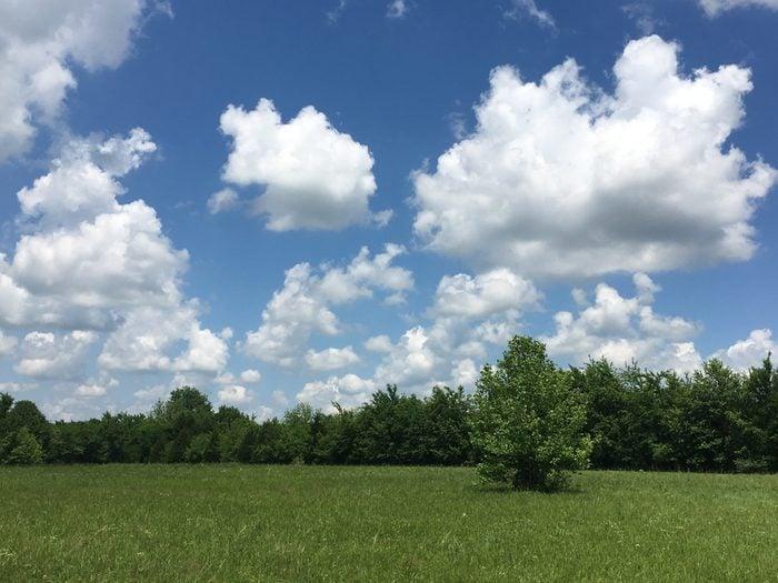 Honey Springs Battlefield