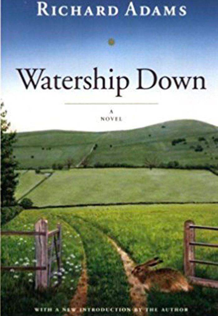 Watership Downs