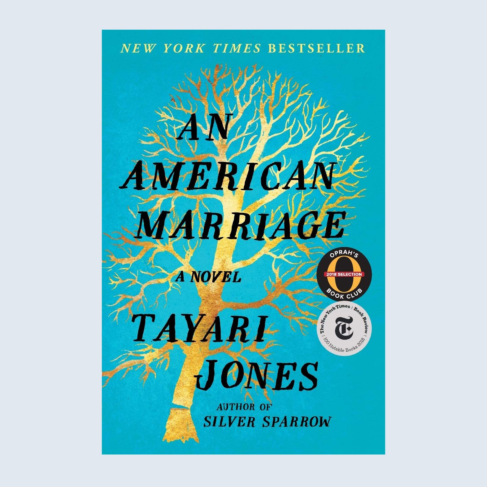 An American Marriage book