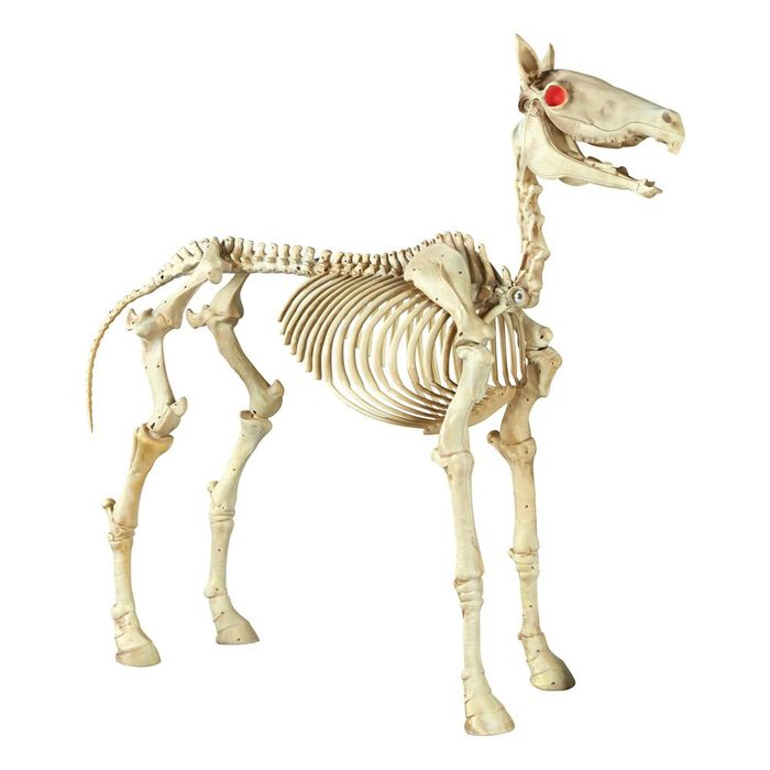 Horse Skeleton Decoration