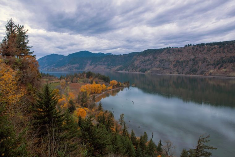 Fall Season Color at Ruthton Point along Columbia River in Hood River Oregon on a cloudy day