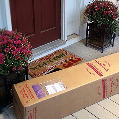tree in box at door