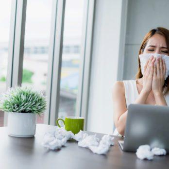 Sneeze Less Now