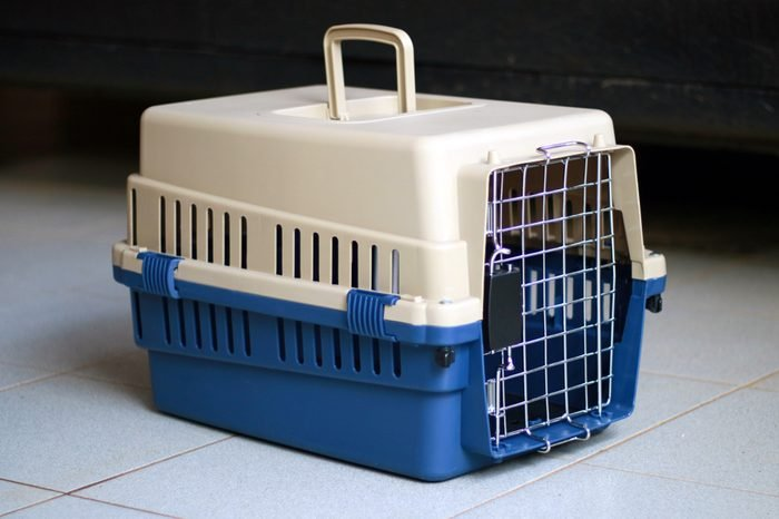 Pet carrier for cat or small dog.