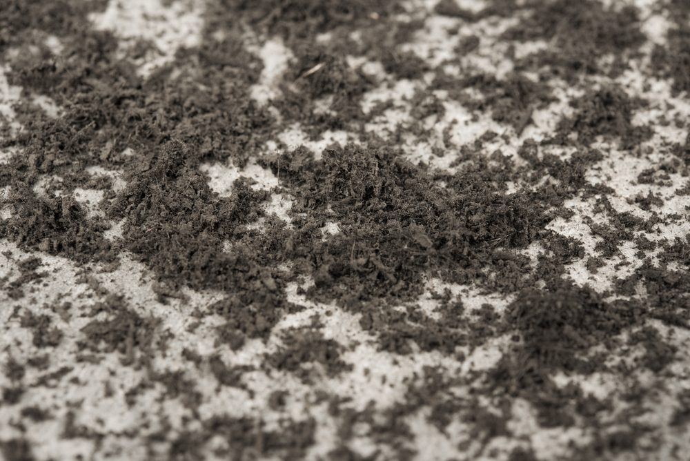 Pile of dust on concrete floor , close up