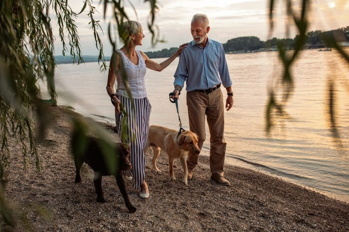 happy senior couple with dogs walking. Romantic ideas